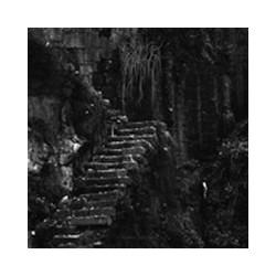 """Bosque """"Ermo Abismo"""" EP"""